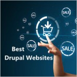 The Best Drupal eCommerce Sites That Set Example for Shopping Site