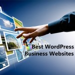 A Collection of the Best WordPress Business Websites That Are Set As Examples