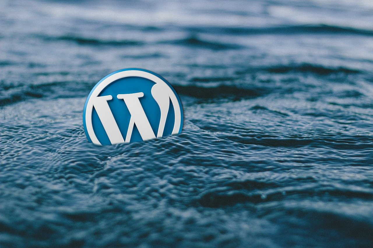 The WordPress icon in the sea